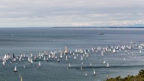 Barcolana regatta of Trieste Royalty Free Stock Image