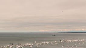 Barcolana regatta of Trieste Stock Image