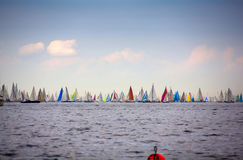 46 Barcolana regatta Royalty Free Stock Photo