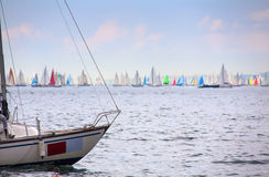 46 Barcolana regatta Stock Photography