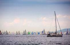 46 Barcolana regatta Stock Images