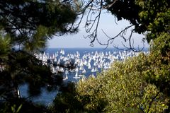 Barcolana, The Trieste regatta Royalty Free Stock Image