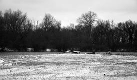 Barcos abandonados Fotografía de archivo