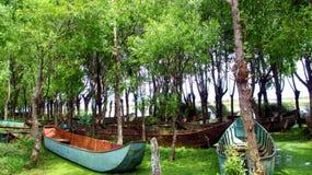 Barcos abandonados en el bosque Foto de archivo libre de regalías