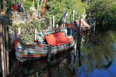 Barcos altamente ornamentado no reino animal fotografia de stock royalty free