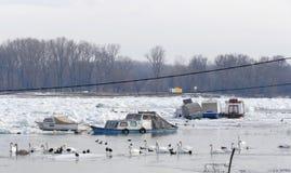 Barcos atrapados en el río Danubio congelado Imágenes de archivo libres de regalías
