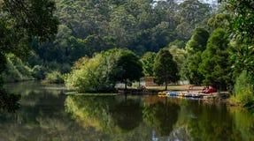 Barcos coloridos para el alquiler en un lago Fotos de archivo libres de regalías