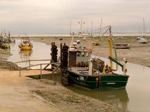 Barcos da bucárdia Imagens de Stock Royalty Free