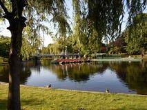 Barcos da cisne e ponte da lagoa, jardim de Boston Public, Boston, Massachusetts, EUA Fotos de Stock Royalty Free
