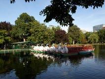 Barcos da cisne, jardim de Boston Public, Boston, Massachusetts, EUA Imagem de Stock