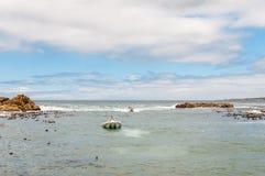 Barcos das lagostas que chegam no porto de Kleinmond Imagens de Stock Royalty Free
