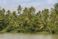 Barcos das marés de Allepey no estado de Kerala, Índia Foto de Stock