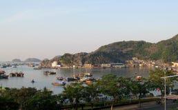 Barcos de casa na baía longa do Ha perto da ilha de Cat Ba, Vietname Fotos de Stock