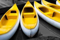 Barcos de fila amarillos Imagen de archivo