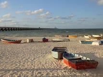 Barcos de fileira no por do sol Imagens de Stock