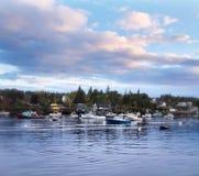 Barcos de la langosta en puerto Imagen de archivo