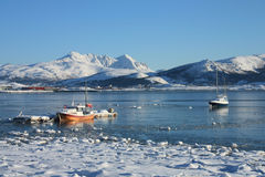 Barcos de Lofoten que flotan en el hielo Imágenes de archivo libres de regalías