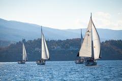 Barcos de los competidores durante de regatta de la navegación Foto de archivo libre de regalías