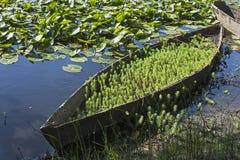 Barcos de madeira da parte inferior lisa Fotos de Stock