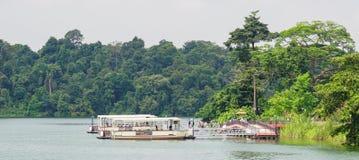 Barcos de madeira do turista em um lago da floresta fotos de stock