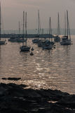 Barcos de navegación Marina Punta del Este Uruguay Imágenes de archivo libres de regalías