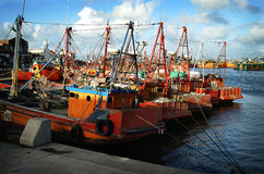 Barcos de pesca alaranjados em março del Plata Foto de Stock Royalty Free
