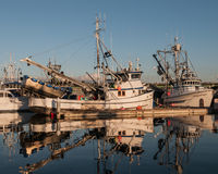 Barcos de pesca comercial Foto de Stock