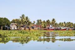 Barcos de pesca de Kerala amarrados atrapados por el jacinto Fotografía de archivo
