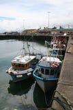 Barcos de pesca de Portavogie imagem de stock royalty free