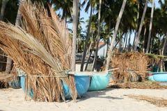 Barcos de pesca debajo de las palmeras en la playa tropical Imagen de archivo libre de regalías