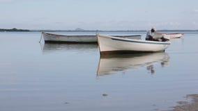 Barcos de pesca en el Océano Índico almacen de video