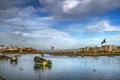 Barcos de pesca en la bahía y las gaviotas del Pacífico y el volar en Salies (Marruecos) en el fondo de la fortaleza vieja Foto de archivo