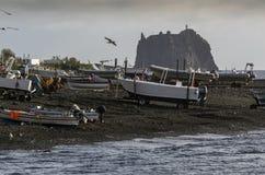 Barcos de pesca na costa com os guaxinins do mar do voo no nascer do sol imagem de stock
