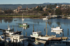 Barcos de pesca no rio de Tamar, Launceston, Tasmânia Imagens de Stock Royalty Free