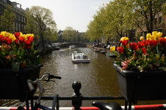 Barcos de visita turístico de excursión en Amsterdam, Países Bajos Fotos de archivo libres de regalías