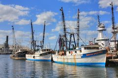 Barcos del camarón Fotografía de archivo libre de regalías