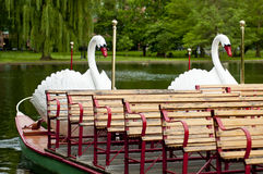 Barcos del cisne de Boston fotos de archivo