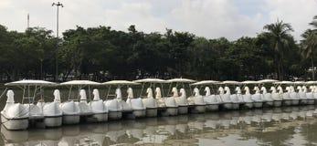 Barcos del pato Fotografía de archivo