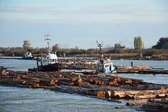 Barcos del tirón que trabajan en auges del registro Foto de archivo libre de regalías