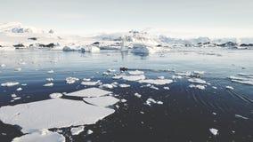 Barcos del zodiaco en el océano de la Antártida Tiro aéreo metrajes