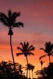 Barcos do nascer do sol na praia de brilho Fotos de Stock Royalty Free