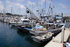Barcos do negócio da pesca fotos de stock