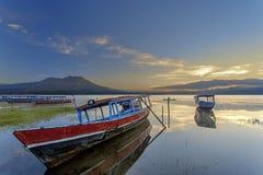 Barcos dos peixes Foto de Stock