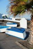 Barcos e palma na costa. Imagem de Stock Royalty Free