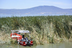 Barcos e parte dianteira do lago, Chapala Fotos de Stock Royalty Free