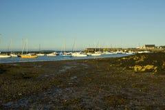 Barcos em suas amarrações ao lado da ilha do berbigão no porto maré natural em Groomsport no Co para baixo, Irlanda do Norte com  fotografia de stock