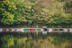Barcos em uma fileira em um lago cercado por árvores verdes Foto de Stock Royalty Free