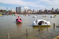 Barcos en la charca de Shinobazu en el parque de Ueno Foto de archivo libre de regalías