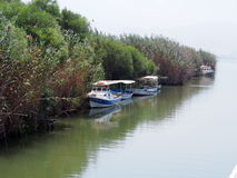 Barcos en paraíso del pájaro Imagenes de archivo