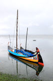 Barcos moliceiros, traditional boats of Portugal Royalty Free Stock Photography